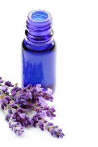 FREE 5ml Carshalton Lavender oil