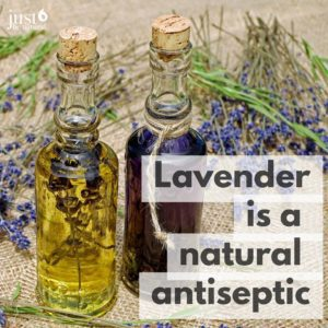 5 Unexpected Benefits of Lavender Oil